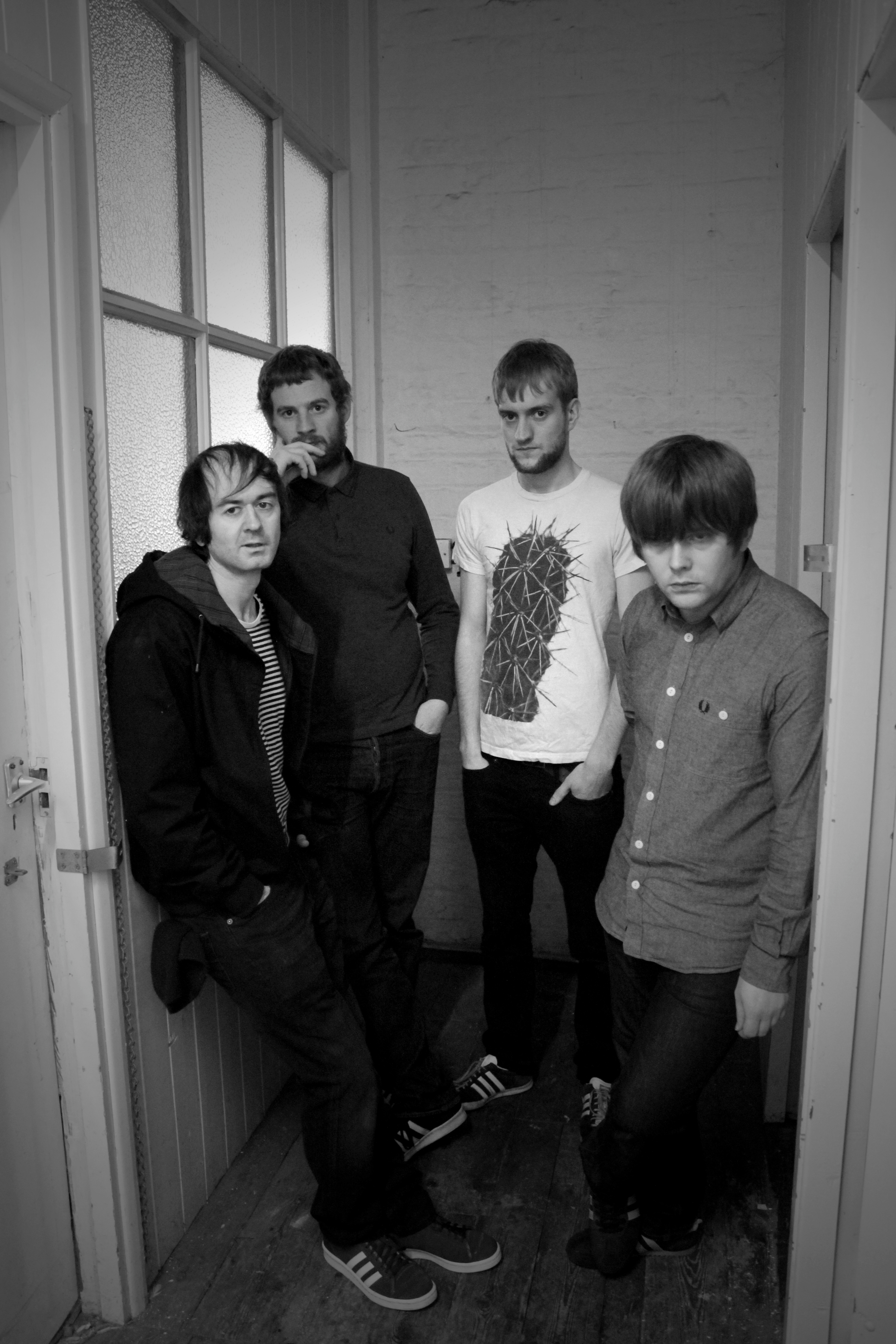 New To Us – The Lucid Dream – For The Rabbits